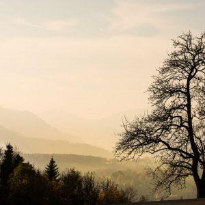 warmes Herbstbild